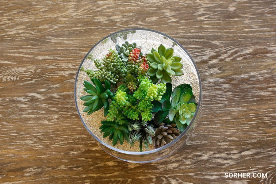 桌上型仿真多肉植物組